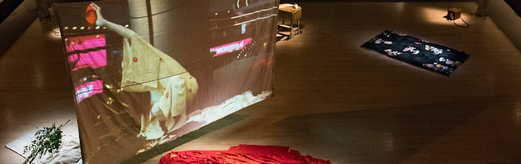 Video Installation: A Body with Water