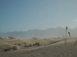 Death Valley: Sand (2019)